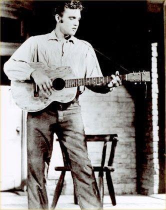 acoustic Elvis