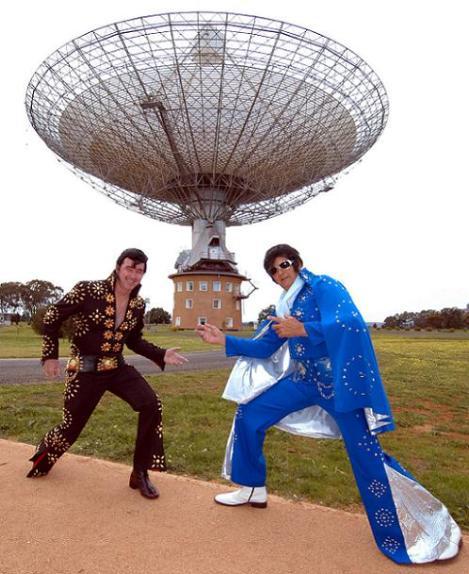 more Elvis, more Dish!